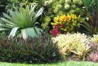 Adare Bali style landscaping 6old