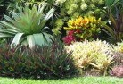 Adare Beach and coastal landscaping 8