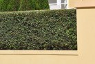 Adare Hard landscaping surfaces 8
