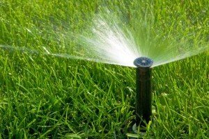 Kwikfynd Landscaping Irrigation