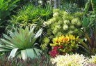Adare Sustainable landscaping 3